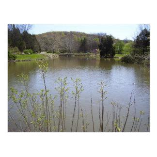 Bernheim Pond Postcard