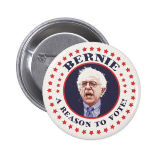 Bernie Reason To Vote Pinback Button