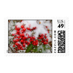 Berries and Snow Postage