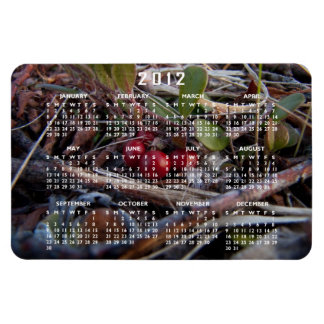 Berries and Twigs; 2012 Calendar Magnet