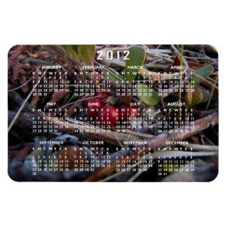 Berries and Twigs; 2012 Calendar Rectangular Photo Magnet