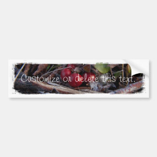 Berries and Twigs; Customizable Bumper Stickers
