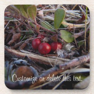 Berries and Twigs; Customizable Drink Coaster