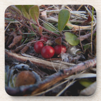 Berries and Twigs Drink Coaster