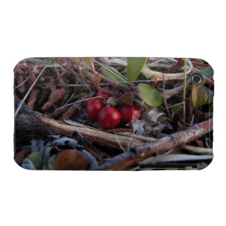 Berries and Twigs iPhone 3 Case-Mate Cases