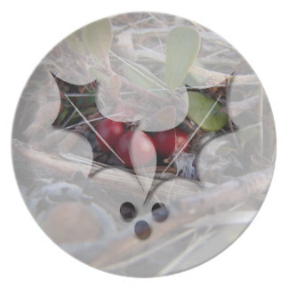 Berries and Twigs; Merry Christmas Melamine Plate