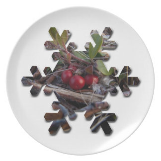 Berries and Twigs; Merry Christmas Plate