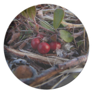 Berries and Twigs Plate