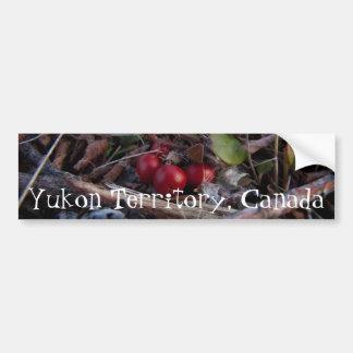 Berries and Twigs; Yukon Territory Souvenir Bumper Sticker