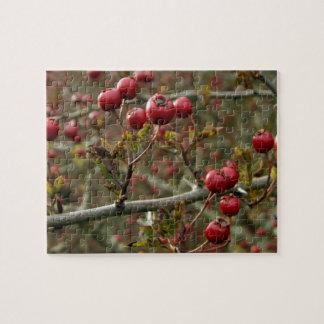 Berries Autumn Puzzle