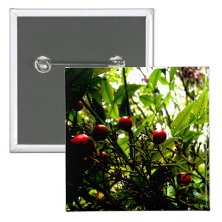 Berries Button