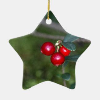 Berries of a wild lingonberry (Vaccinium vitis-ide Ceramic Ornament