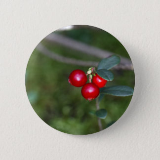 Berries of a wild lingonberry (Vaccinium vitis-ide Pinback Button
