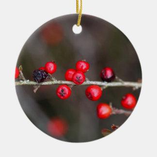 Berries on a Cotoneaster bush Ceramic Ornament