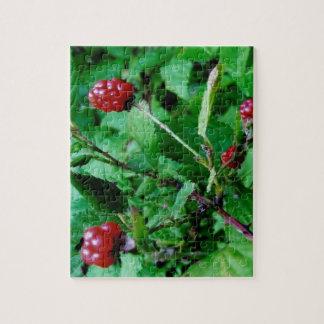 Berries on Tree Puzzle