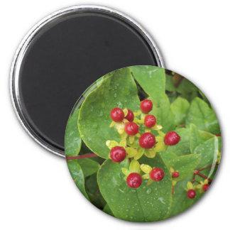 Berries Round Magnet