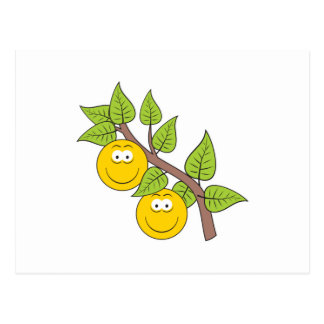 Berries Smiley Face Postcards