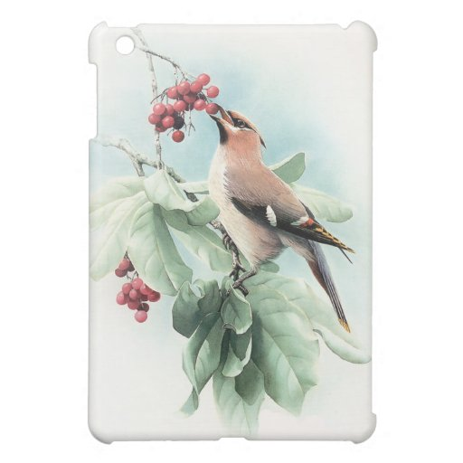 Berries To Eat Case For The iPad Mini