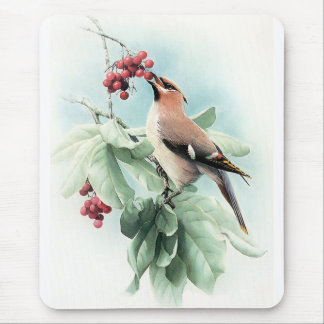 Berries To Eat Mouse Pad