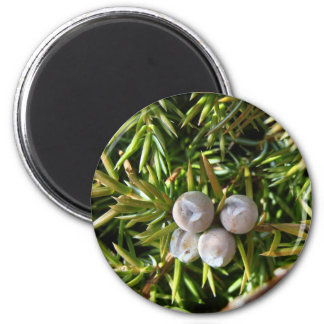 Berry Baubles 2 Inch Round Magnet