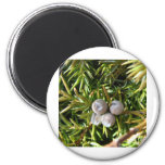 Berry Baubles Refrigerator Magnet