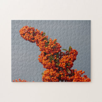 Berry Branch Puzzle
