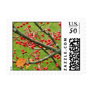 Berry Bush stamp