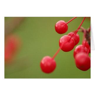 Berry Close card