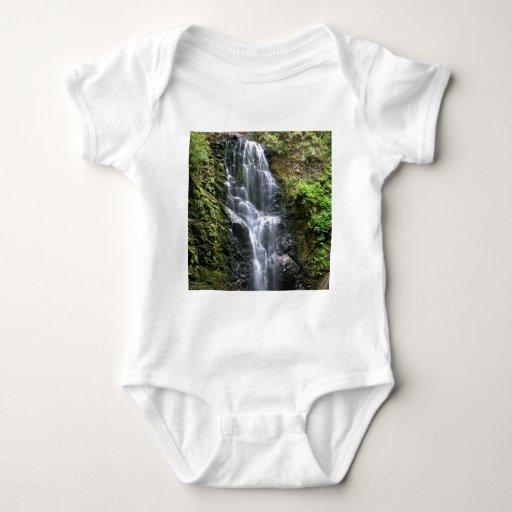 Berry Creek Falls T Shirt