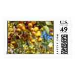berry delight stamp