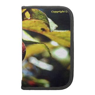 Berry folio smartphone case planners