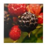 Berry Good Trivet/Tile