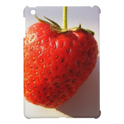 Berry iPad Mini Cover
