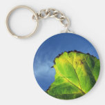 Berry leaf and Autumn colors. Keychains