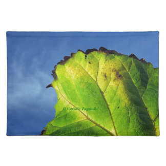 Berry leaf and Autumn colors. Placemats