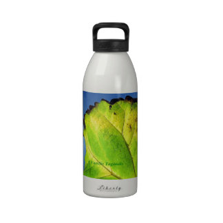 Berry leaf and Autumn colors. Drinking Bottles