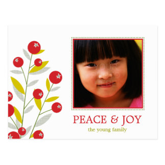 Berry Merry Christmas Holiday Photo Card  Postcard