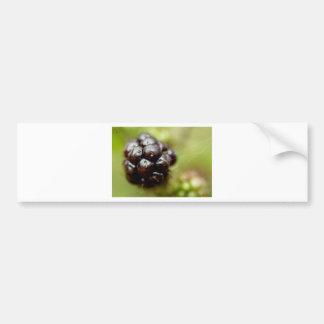 Berry Nice Bumper Sticker