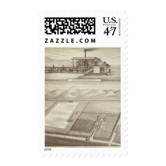 Berry ranch, Lindsay Postage