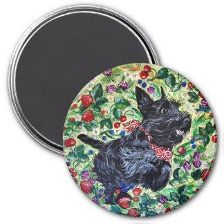 Berry Scottish Terrier! Refrigerator Magnet