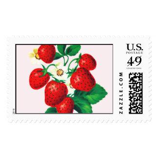 Berry Sweet Pink Stamp by Loralee Lewis