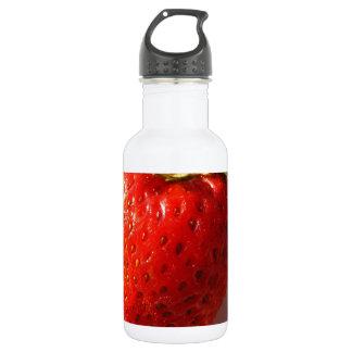 Berry Water Bottle