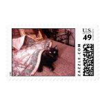 Bert Stamp