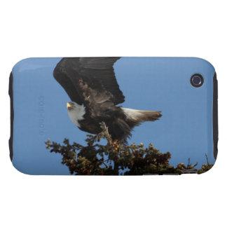 BERTF Bald Eagle Ready to Flee iPhone 3 Tough Cover