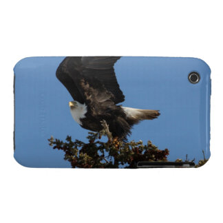 BERTF Bald Eagle Ready to Flee iPhone 3 Case-Mate Cases