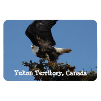 BERTF Bald Eagle Ready to Flee Rectangular Photo Magnet
