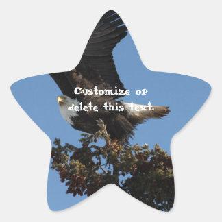 BERTF Bald Eagle Ready to Flee Star Sticker