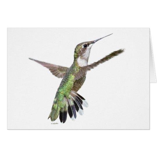 Berylline Hummingbird Painting Card