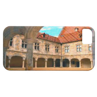 Besançon,ancient courtyard iPhone SE/5/5s case
