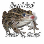 ¡Besando la rana - fruncido para arriba, miel! Escultura Fotografica